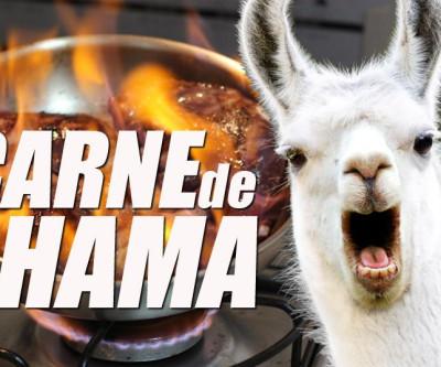 Comemos carne de lhama na Bolívia - Volta ao Mundo